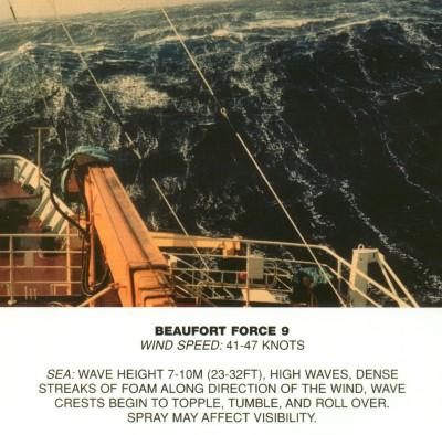 Высота волны при шторме 6 баллов